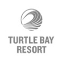 logo turtle bay resort