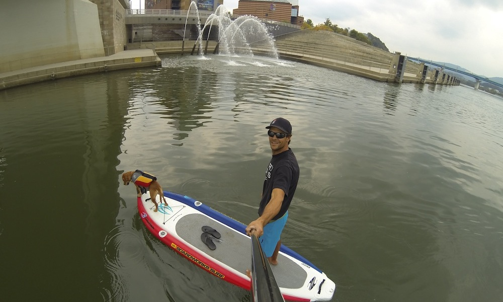 how to keep your dog safe when paddle boarding 4