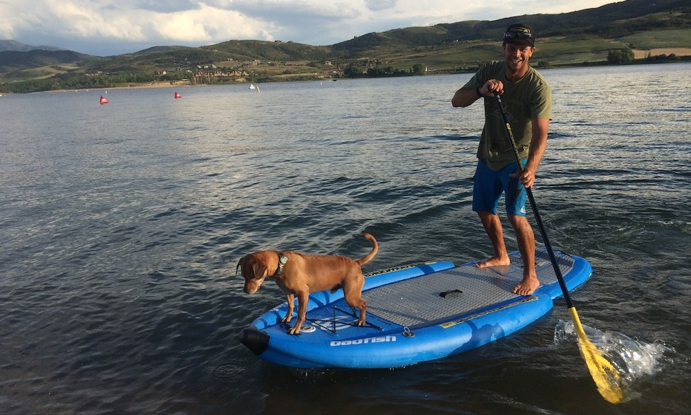 how to keep your dog safe when paddle boarding 9