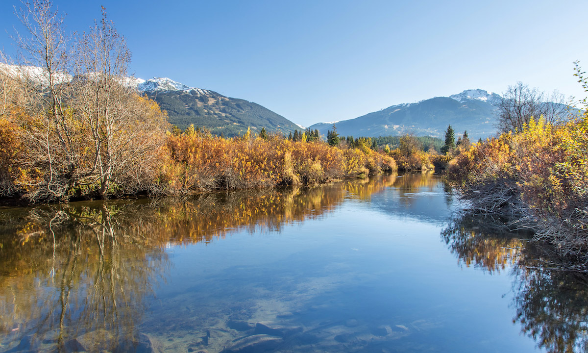 paddle boarding bc canda river of golden dreams whistler autumn