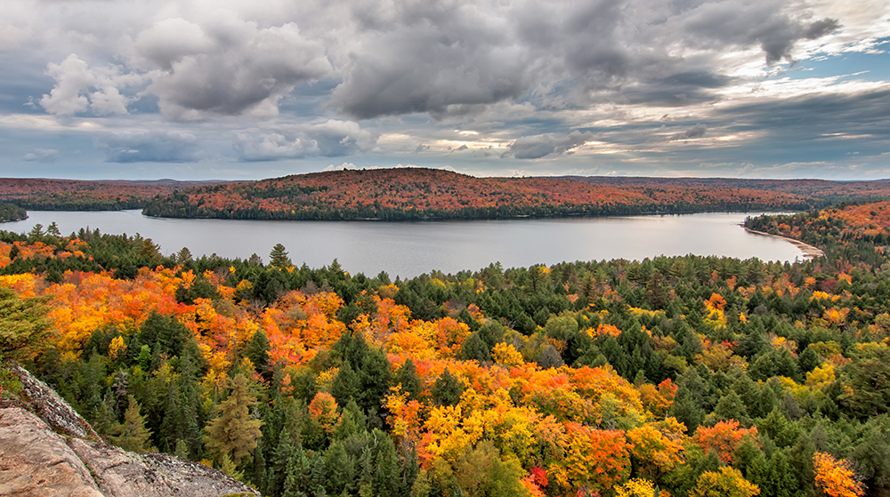 algonquin park sup destination autumn