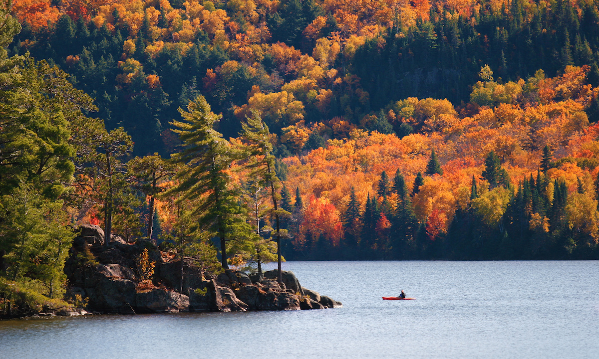 algonquin park sup destination autumn01