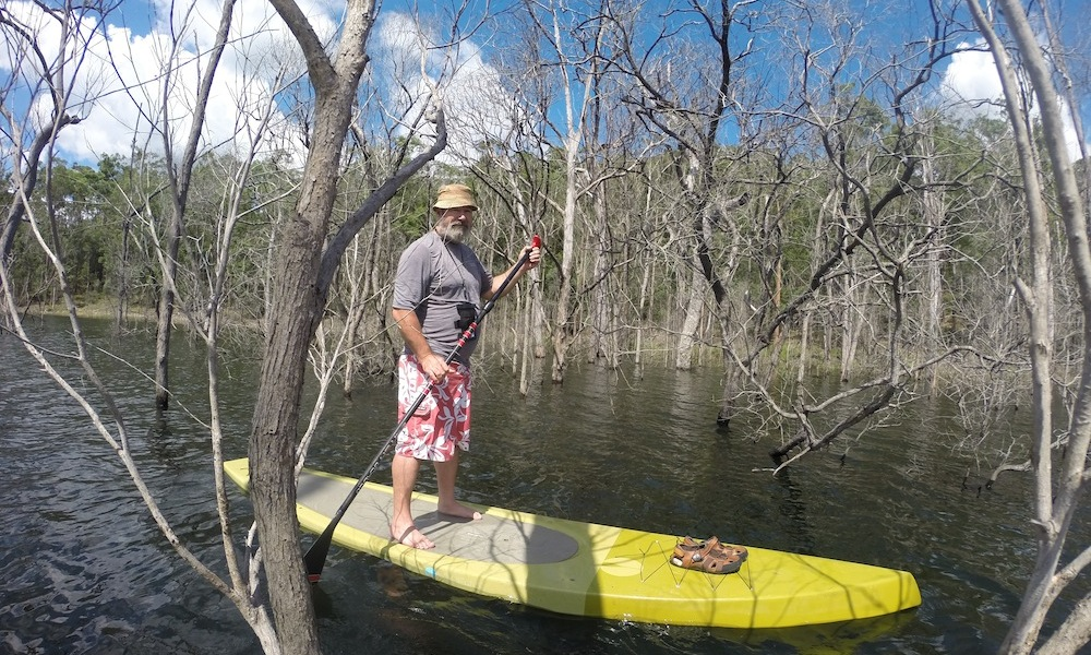 paddle boarding gold coast hinze dam drowned forest