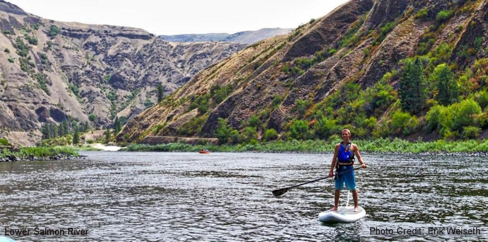 paddle boarding central idaho lower salmon river 2