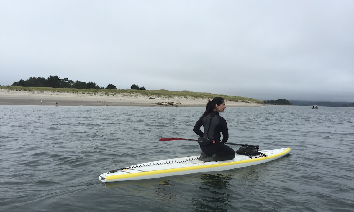 coast nehalam bay photo brett sup beverly downen and sealions