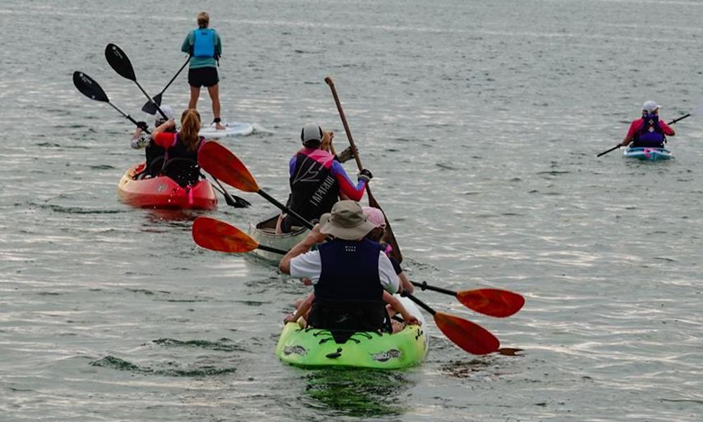 august 2019 events of the month Paddle 4 the Pool