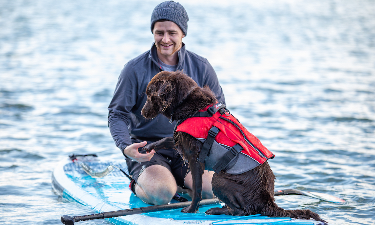 red paddle co dog pfd 1