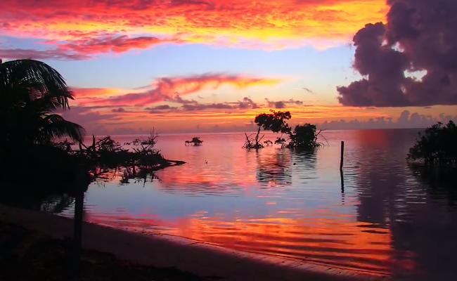 croc-atoll