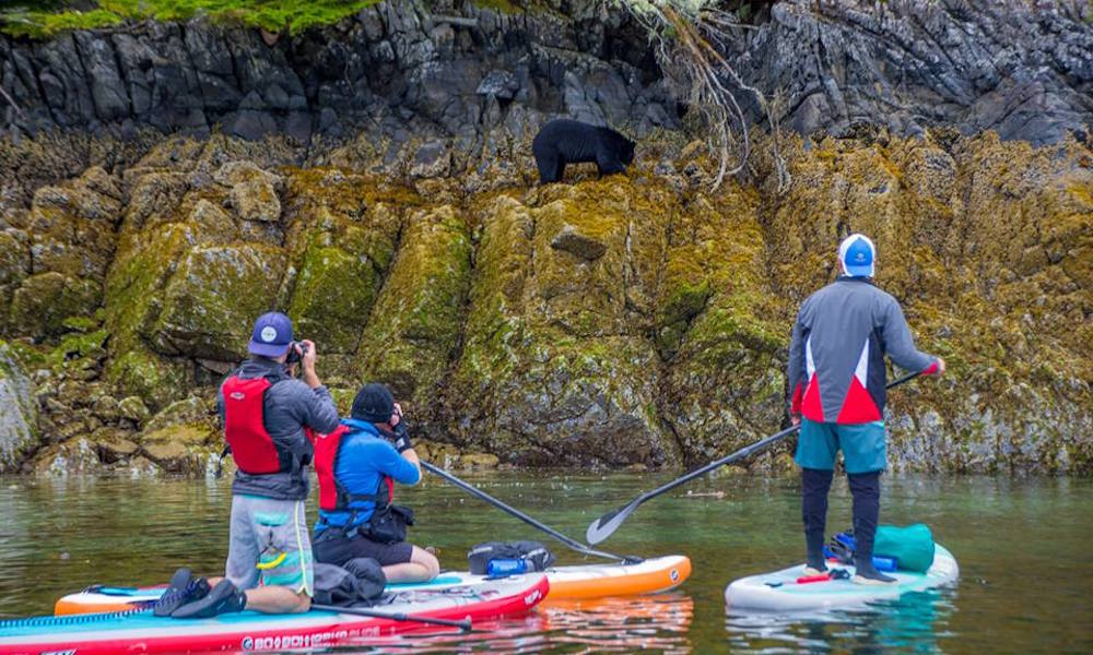 pipeline sup protest expedition