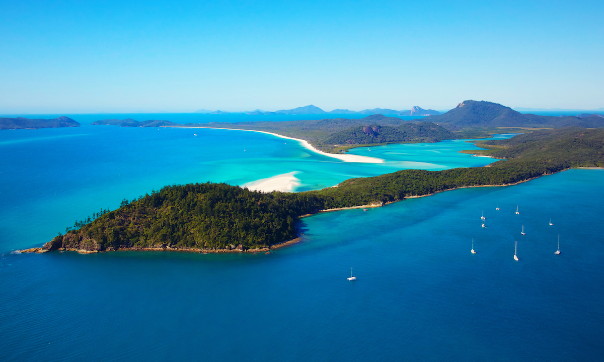 whitsundays islands shark attack paddle board