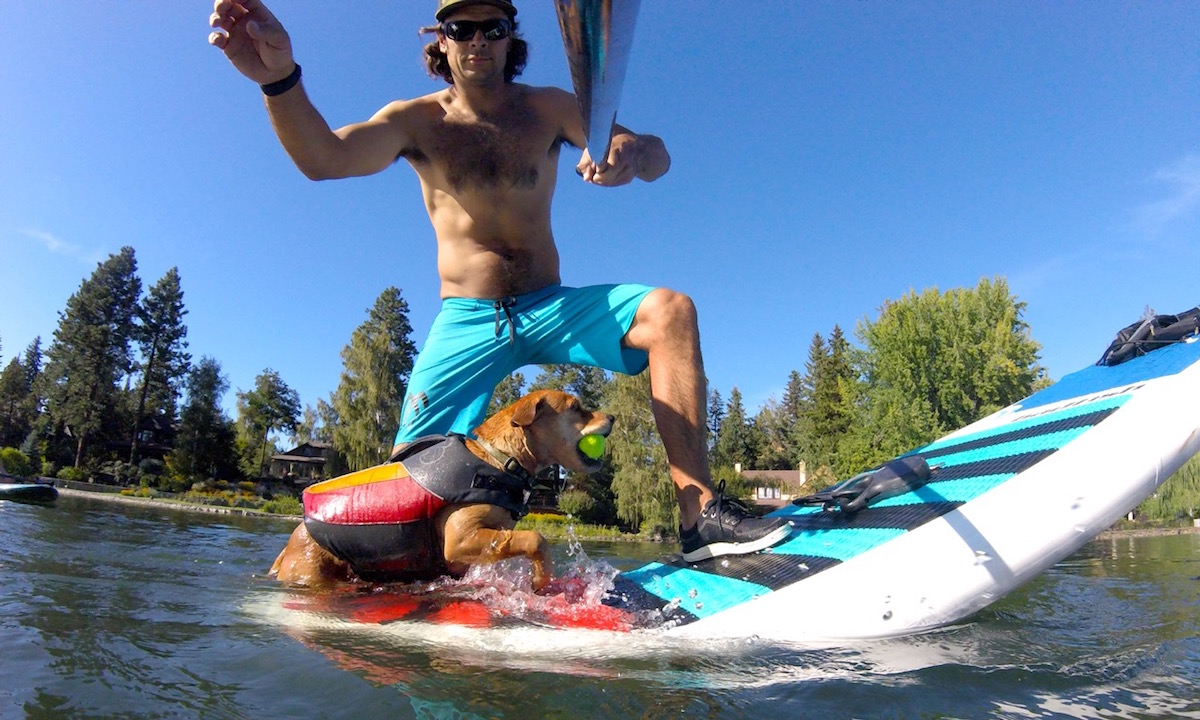 how to get dog comfortable on sup 4