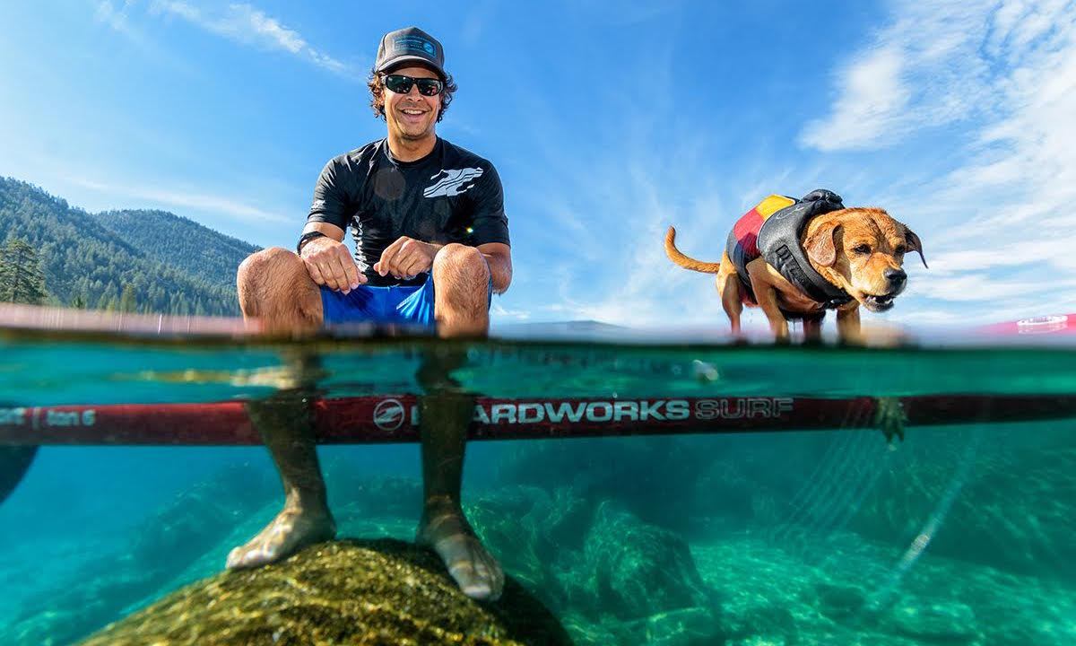 how to get dog comfortable on sup