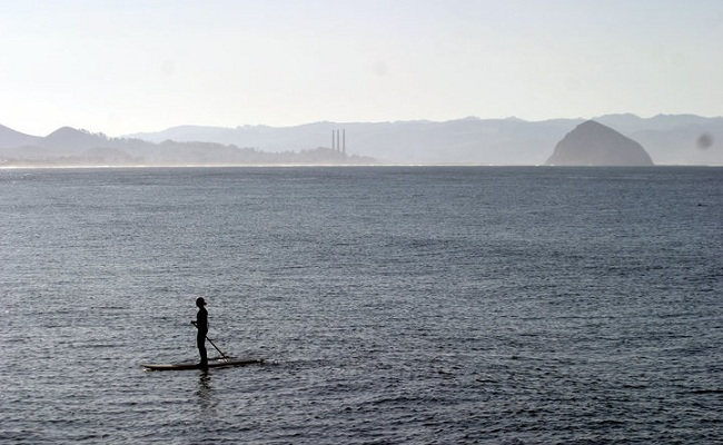 Stand Up Paddle in Morro Bay, California