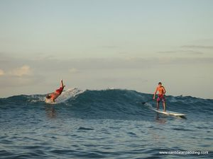 saintmartin-standuppaddleboard-wilderness