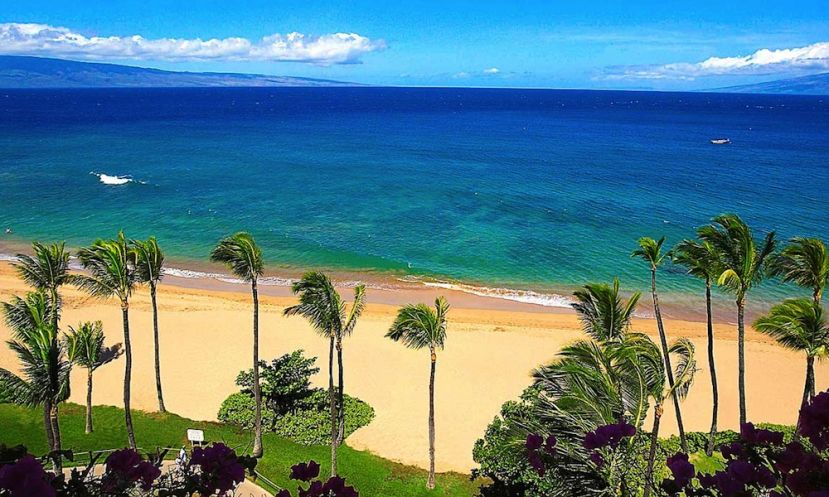 The Inaugural Maui Jim Oceanfest will see the world's best athletes gather at Ka'anapali Beach.