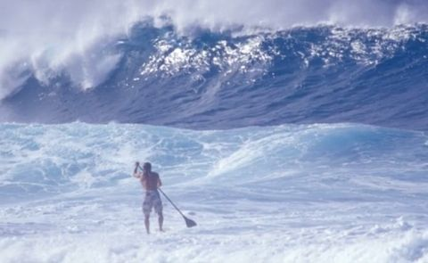 The Story Of Standup Paddle Trailer