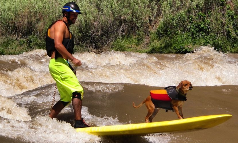 Mike Tavares and Shredder enjoying the river.