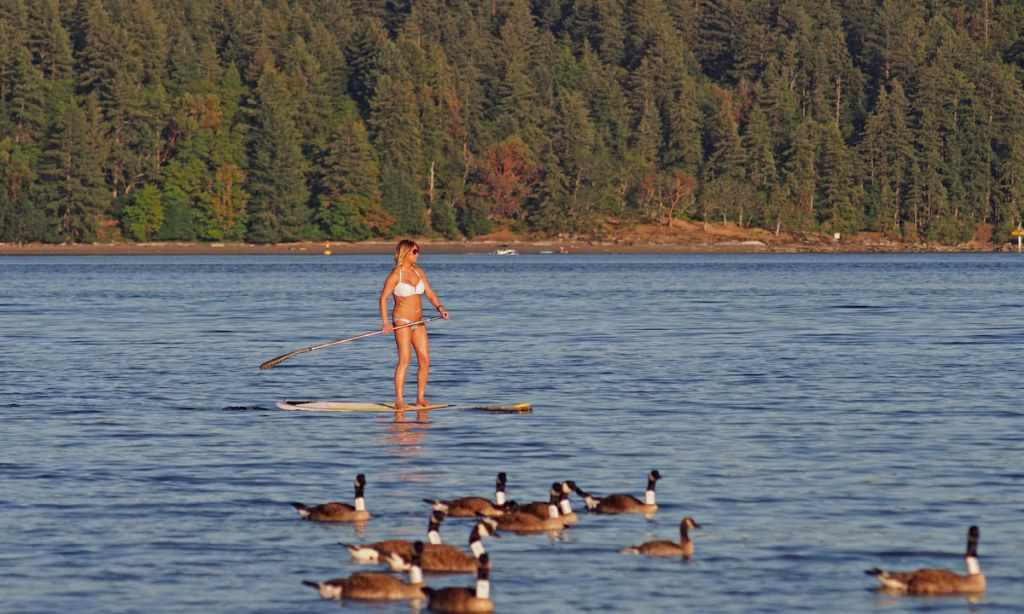 Paddle Boarding Vancouver, British Columbia