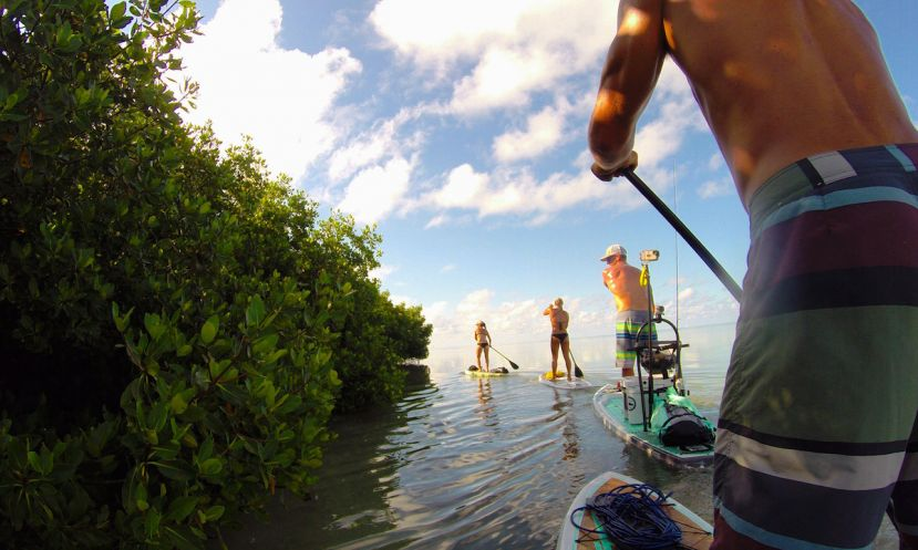 Paddle Boarding Stuart, Florida
