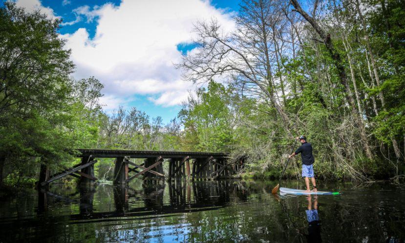 Paddle Boarding Amelia Island, Florida
