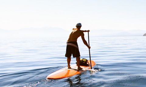 Lakeshore Paddleboard Co. SUP Boards