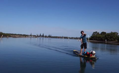 Beau Nixon's Pet-Friendly SUP Adventure