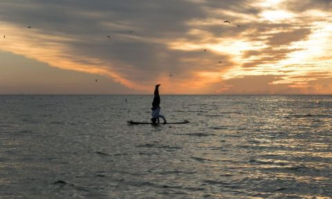 Jeramie Vaine doing a head stand on his paddle board | Photo courtesy: Marissa Williams