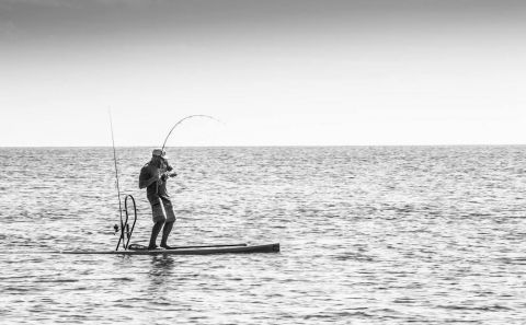 The BOTE Rackham board is perfect for your SUP Fishing needs. | All photos courtesy: BOTE Boards