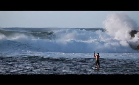 Tropical Blends - Hawaii SUP Video