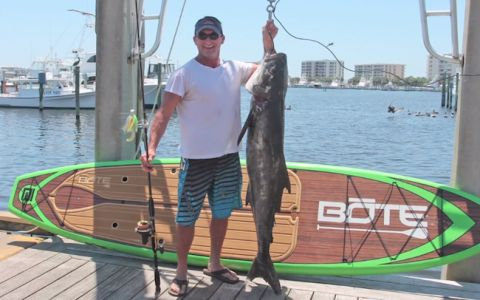 SUP Fisherman Catches Massive Cobia