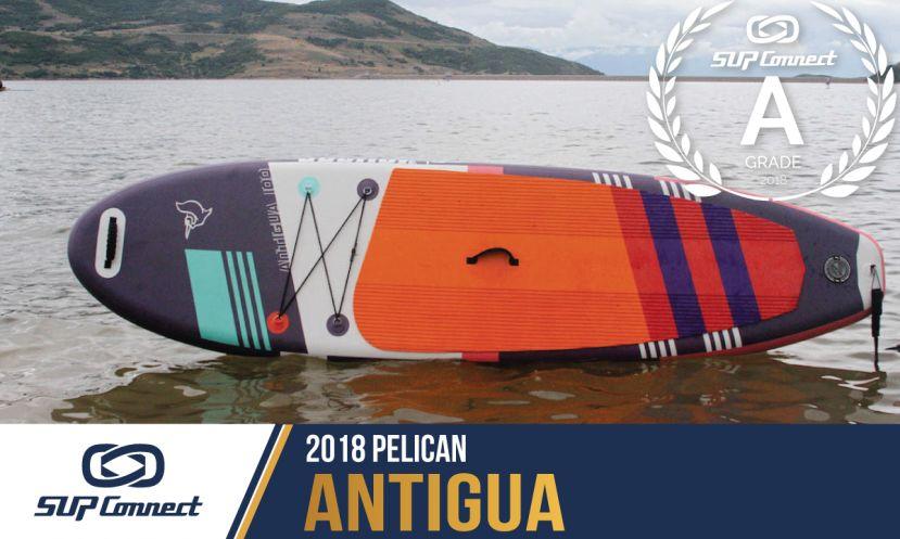 Pelican Antigua