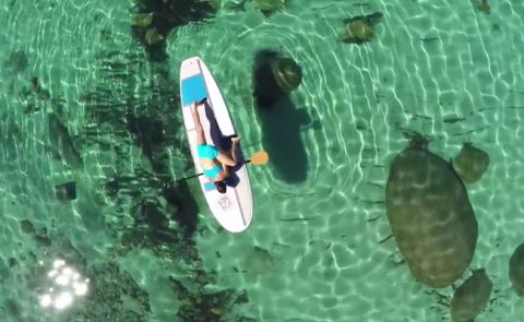 Jessica Cichra Breaks Down SUP Yoga And Boards