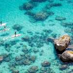 Paddle Boarding's Biggest Trends in 2019
