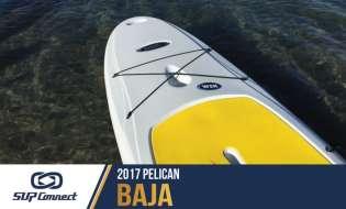 Pelican Baja 100